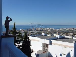 Penthouse in Torrox Park