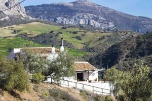 Authentic cortijo with separate apartment, Riogordo